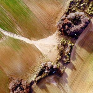Vuelo de peritación de daños en agricultura con dron despues de la borrasca Filomena. Aerial Tecnica©2021