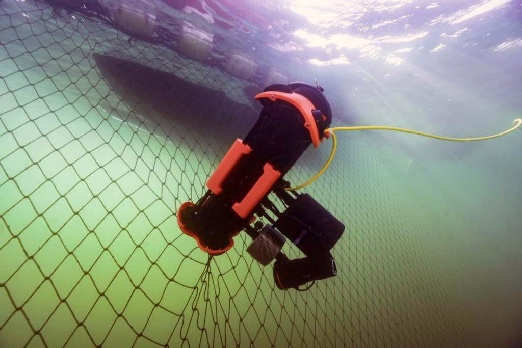 Chasing M2 PRO ROV inspeccionando la red de una piscifactoría.