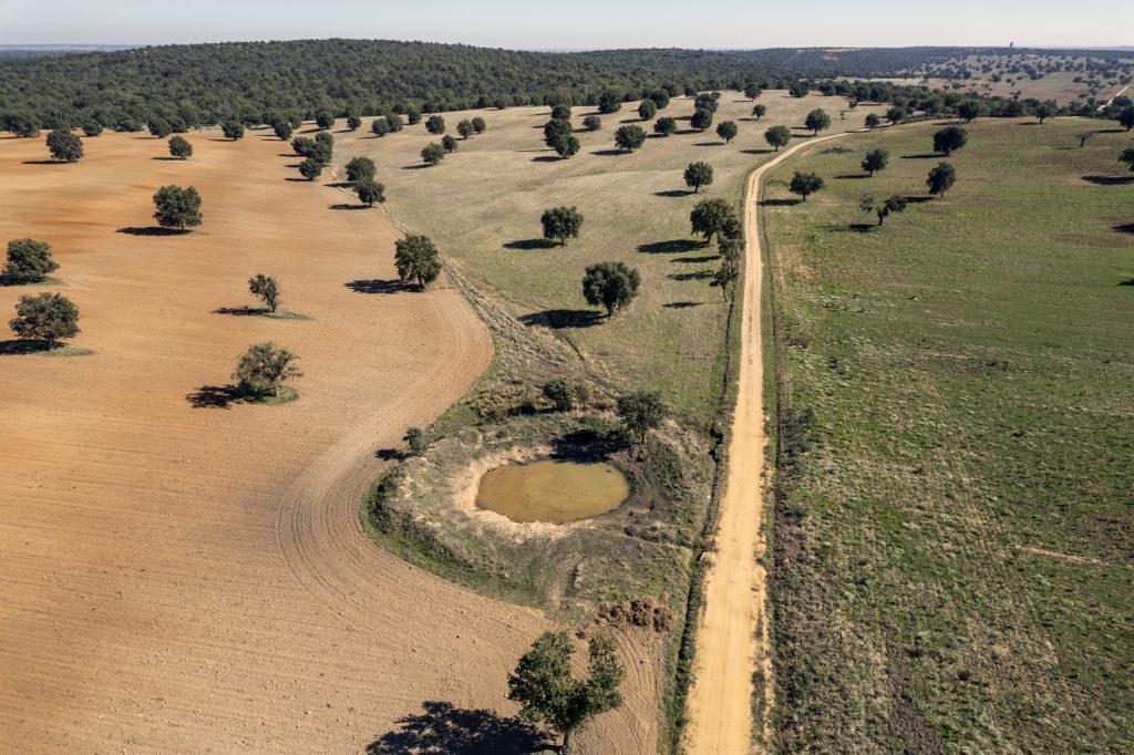 Tierra de Campos Oeste. Hanwha Energy. Prospección Site Assessment para implantación de PSF 150 MWp. Tábara, Zamora, España © AerialTec 2021.